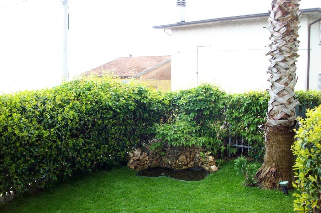 garden 003